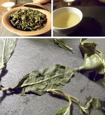 oolong tetere
