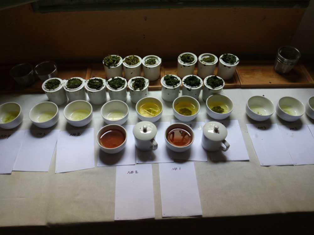 cata de té chino