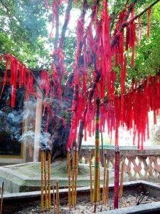guizhou-zhenyuan