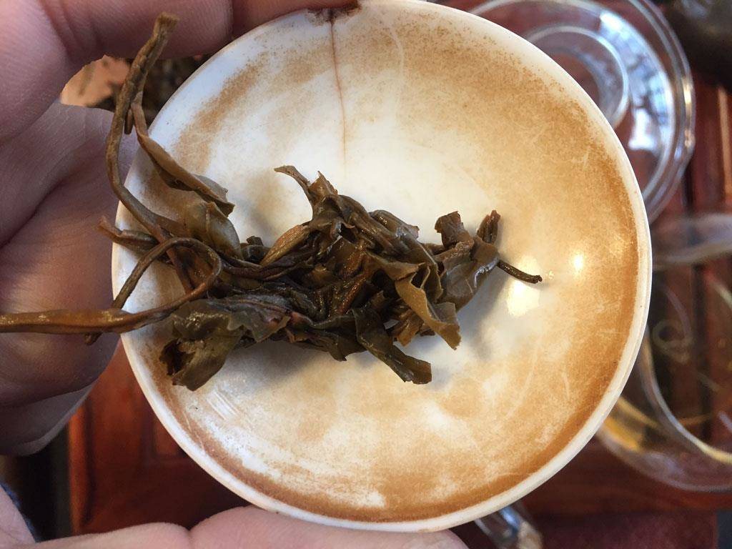 hojas muestras puerh beijing ya xing