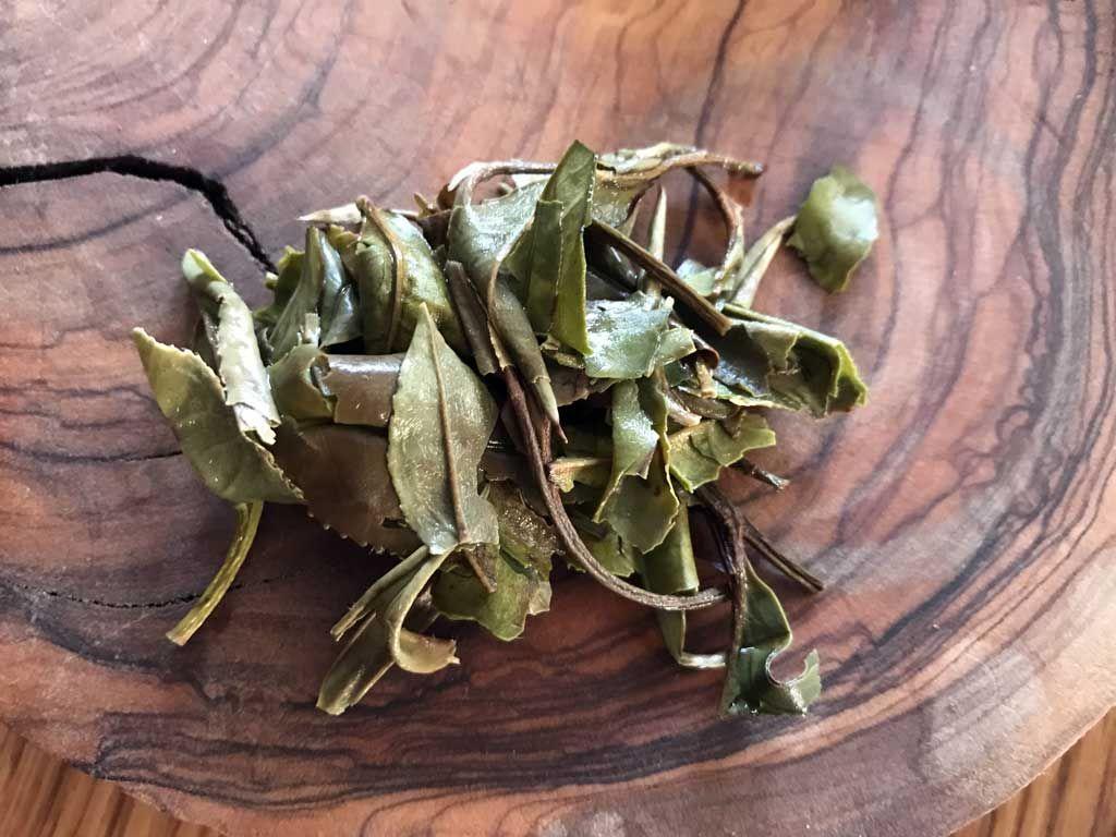 hoja del té blanco a la segunda infusión