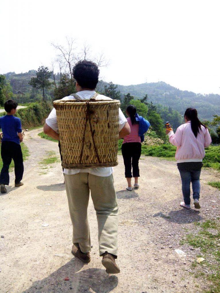 de camino a la plantación de té